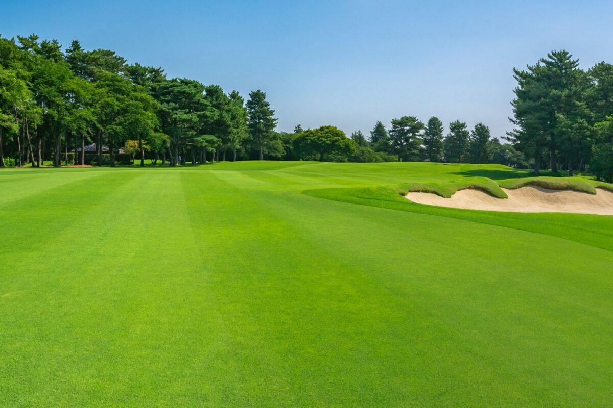 Rich green golf course field