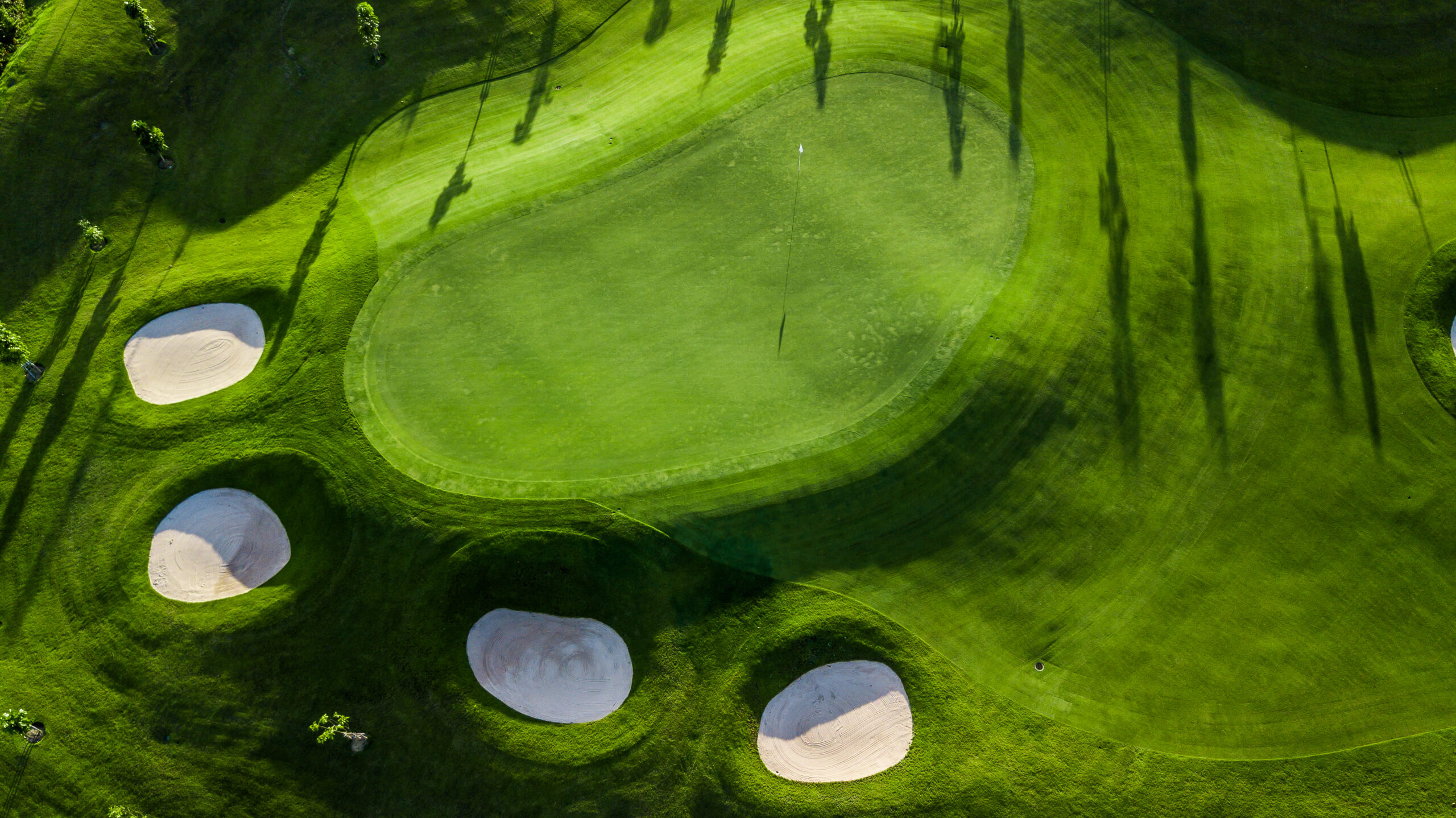 Aerial view of golf course filed