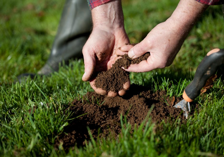 Close up picture gardener holding soil